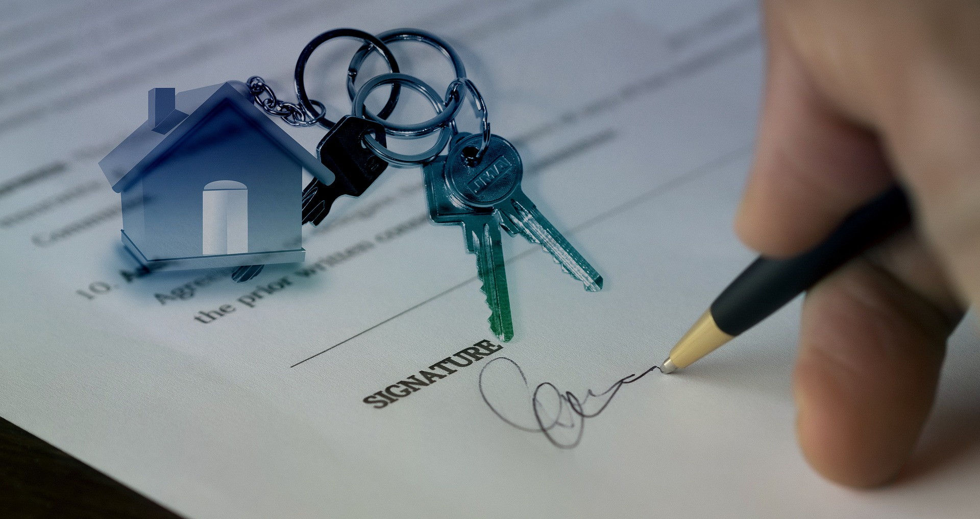 Tips for first home buyers and those of us who've been around the block!